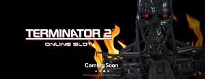Terminator2slot