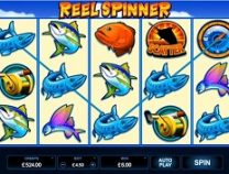 Reel Spinner Slot Screenshot 313