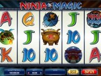 ninja magic slot screenshot 313